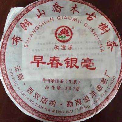 布朗山乔木古树茶早春银毫 云南普洱茶生茶饼