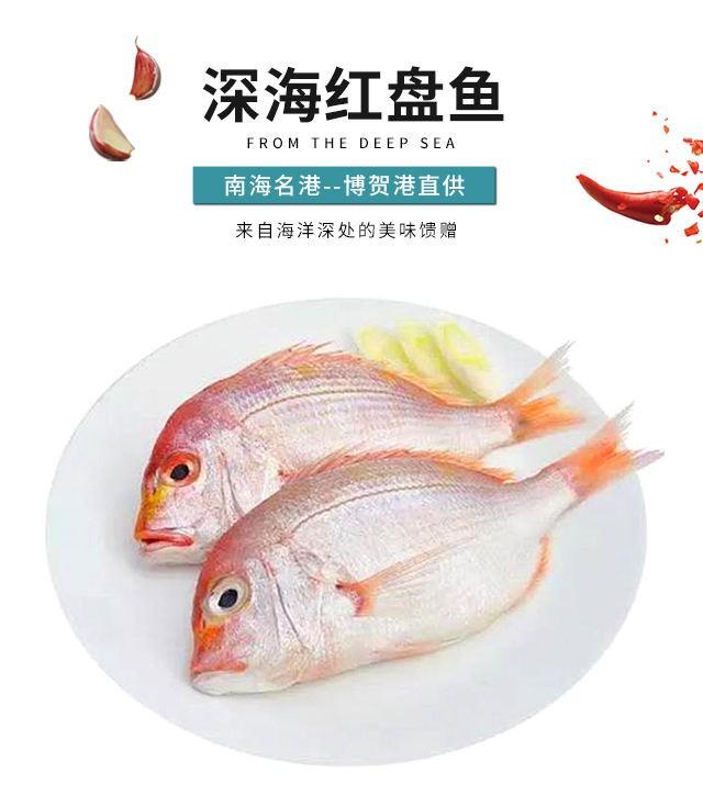 深海红盆鱼
